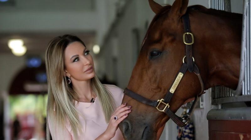 Коні-шейха-800x445